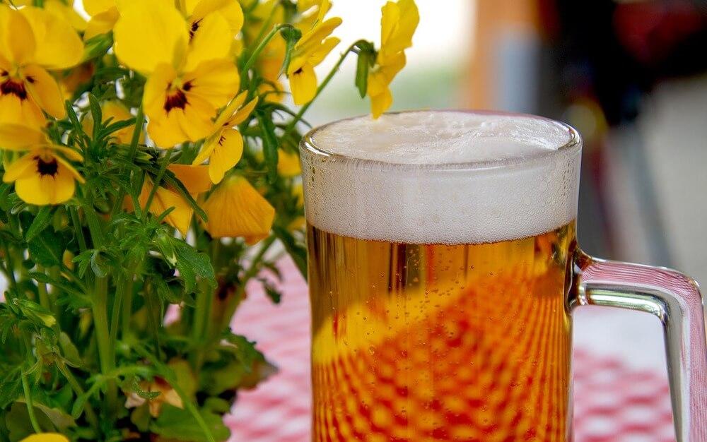 biere-belges-unesco-jean-louis-dourcy