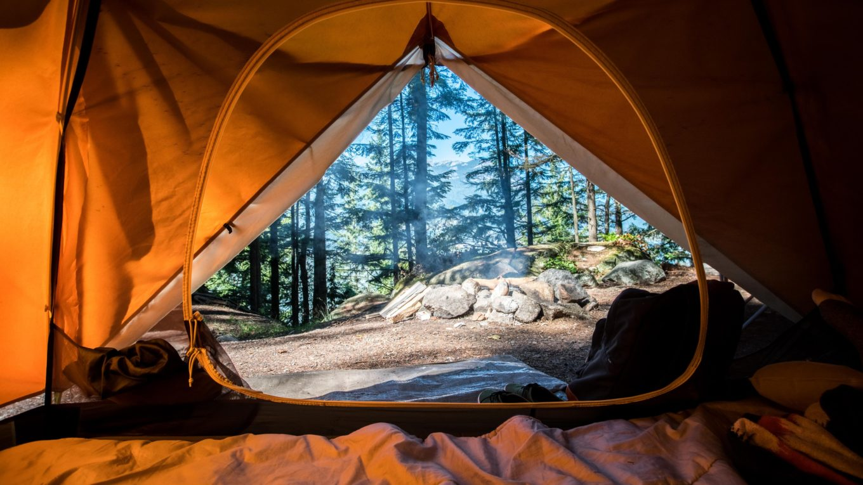 vue vers l'exterieur depuis une tente de camping